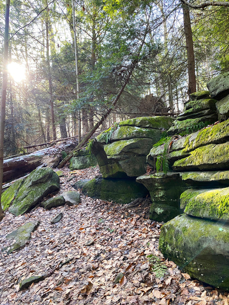 Sunbeam at Kendall Ledges, Cuyahoga Valley Nature Photography, Ohio Nature Wall Art