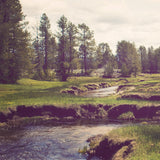 Serene Meadow and Stream Landscape Photograph