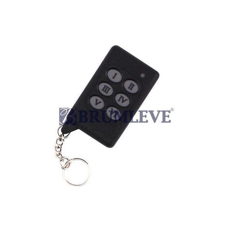 Keyfob, 6-Button Wireless for Black Control Box (Remote)