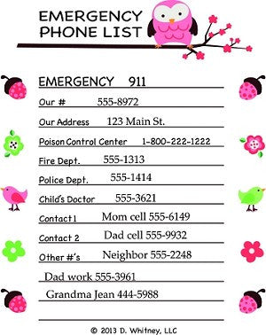 Emergency phone list removable wall decal 911 poison control number pink owls