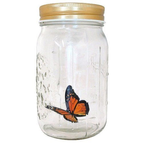 My Butterfly Collection Animated in a Jar Monarch
