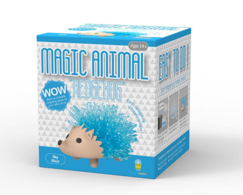 Magic Animal -Crystal Hedgehog