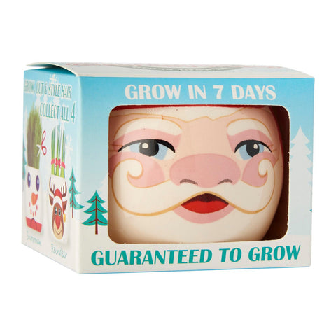 Paris Garden Xmas Set Grass Head Kits