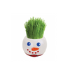 SET of 4 Paris Garden - Xmas Set Ryegrass (4 pc assorted prepack display)
