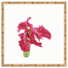 Framed Red Tulip Mandalay / 8x8 (14x14), Art Print - The Pink Pagoda, The Pink Pagoda  - 2