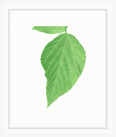 Framed Green Leaves Photography Print