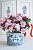 Blue and White Chinese Dragon Planter , Ceramic - OD, The Pink Pagoda  - 2