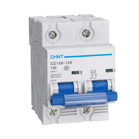 Chint 6Ka 2 Pole C Curve Circuit Breaker