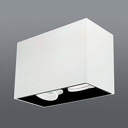 Spazio Lone Adjustable Rectangular Downlight