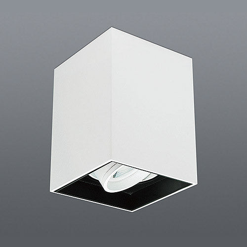 Spazio Lone Adjustable Square Downlight
