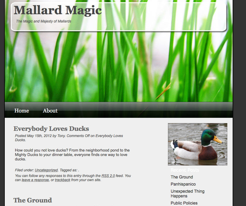 THE MAGIC OF MULLARD - MAKE SURE YOU BOOKMARK US CORRECTLY