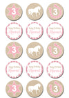 Horse Themed Edible Cupcake Toppers