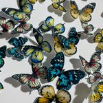 Edible Pre-cut Mixed Coloured Wafer Paper Butterflies