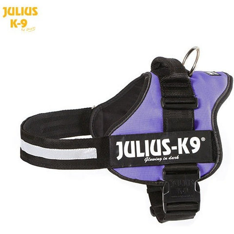 JULIUS K9 Original Powerharness Purple DISCONTINUED