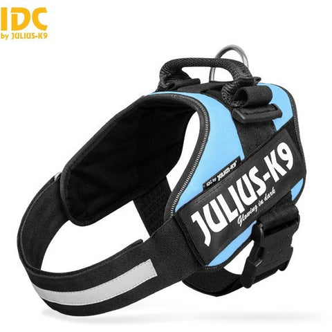JULIUS K9 IDC Powerharness Sky Blue DISCONTINUED
