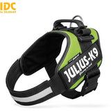 JULIUS K9 IDC Powerharness Kiwi DISCONTINUED