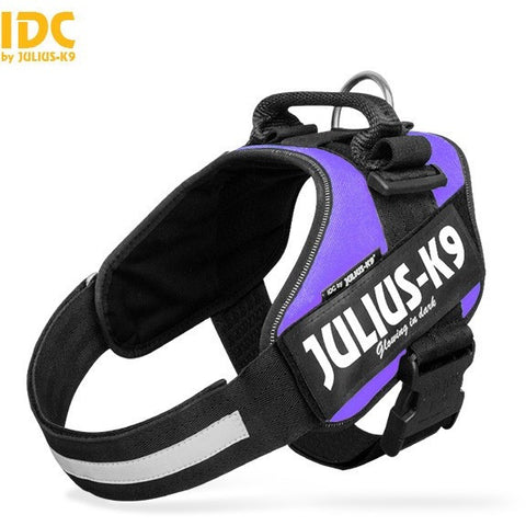JULIUS K9 IDC Powerharness Purple