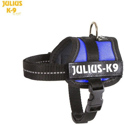 JULIUS K9 Original Powerharness Blue DISCONTINUED