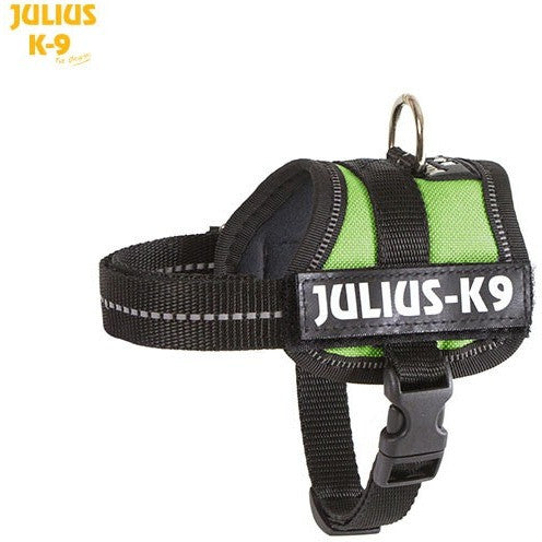 JULIUS K9 Original Powerharness Kiwi