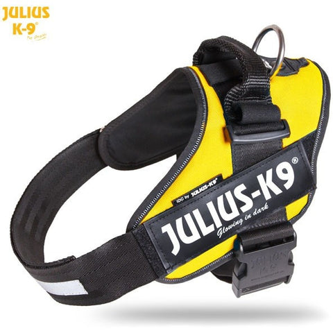 JULIUS K9 IDC Powerharness Sun Yellow DISCONTINUED