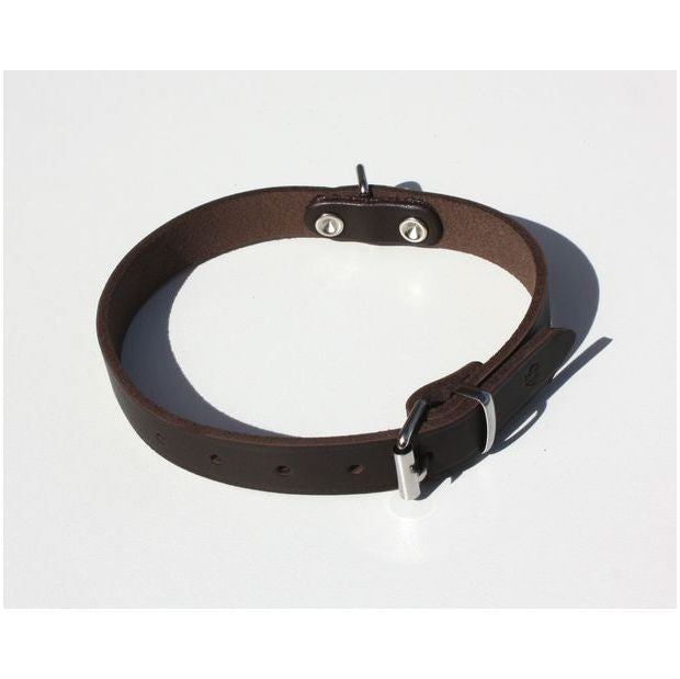 KLIN Simple Leather Collar for puppies and small breeds