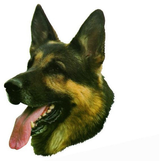 Decal German Shepherd Head