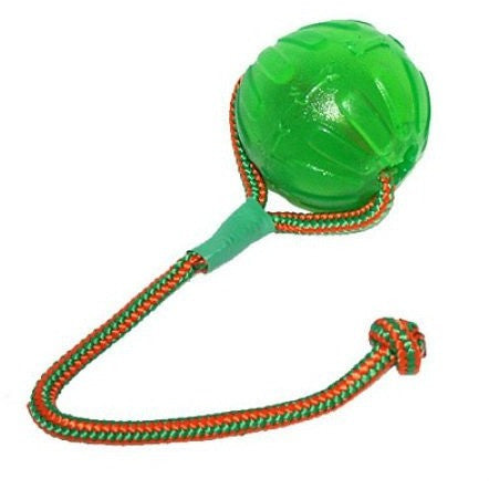 STARMARK Swing 'n Fling Treat Dispensing Chew Ball on a Rope