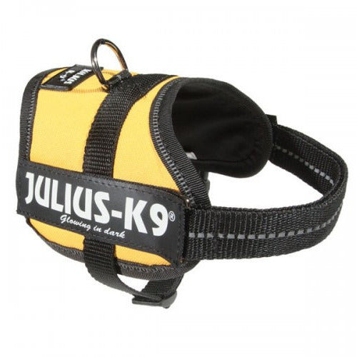 JULIUS K9 Original Powerharness Sun Yellow DISCONTINUED