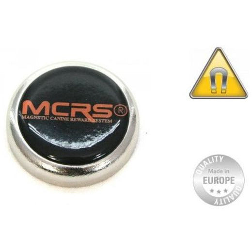 MCRS Magnet Large