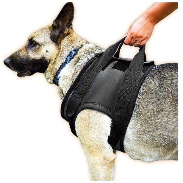 JULIUS K9 Rehabilitaion Harness Walking Support for Injured Dogs (Shoulder)