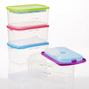 Multicolored 2-Cup Portion Control Containers with Ice Packs (Set of 4)