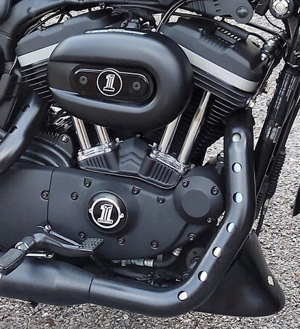 Sportster Engine with black stainless steel bolts