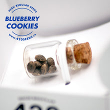 Blueberry Cookies REG