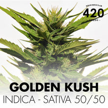 Mix420 Regular – 420Seeds
