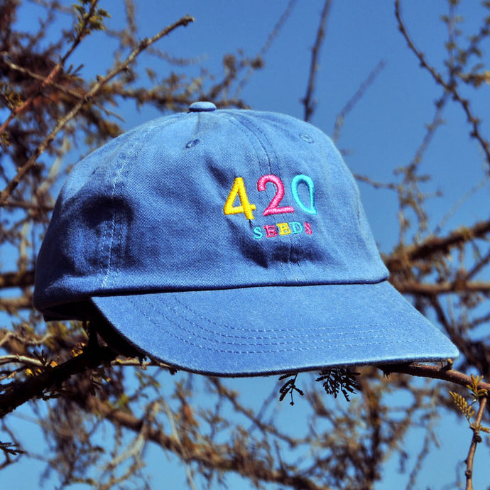 Dad Hat Rainbow Denim