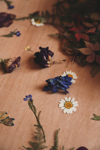 Pressed Wildflower Workshop - Dates Coming Soon