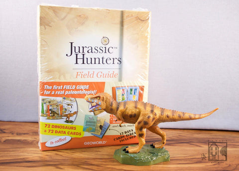 Family and Company- Dino Hunters Kit