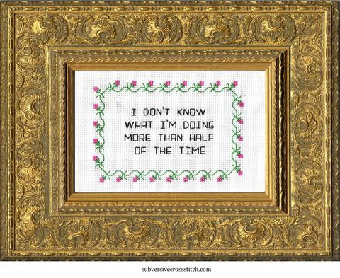 Subversive Cross Stitch-- Cross Stitch Kit-- I Don't Know What I'm Doing Half Of The Time
