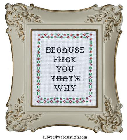Subversive Cross Stitch-- Cross Stitch Kit-- Because Fuck You That's Why