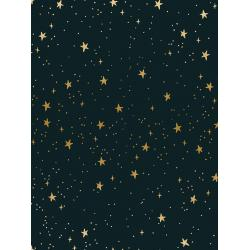 Stars in Black Metallic -- Primavera by Rifle Paper Co for Cotton + Steel