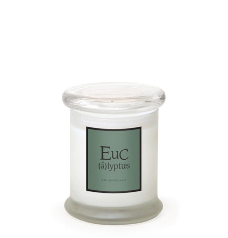 Eucalyptus Frosted Jar Candle