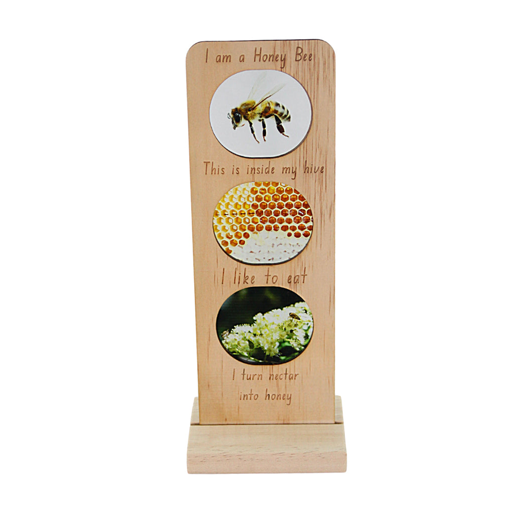 5 Little Bears - In the Garden Ecosystem Plaque - Honey Bee | Mapamundi Kids