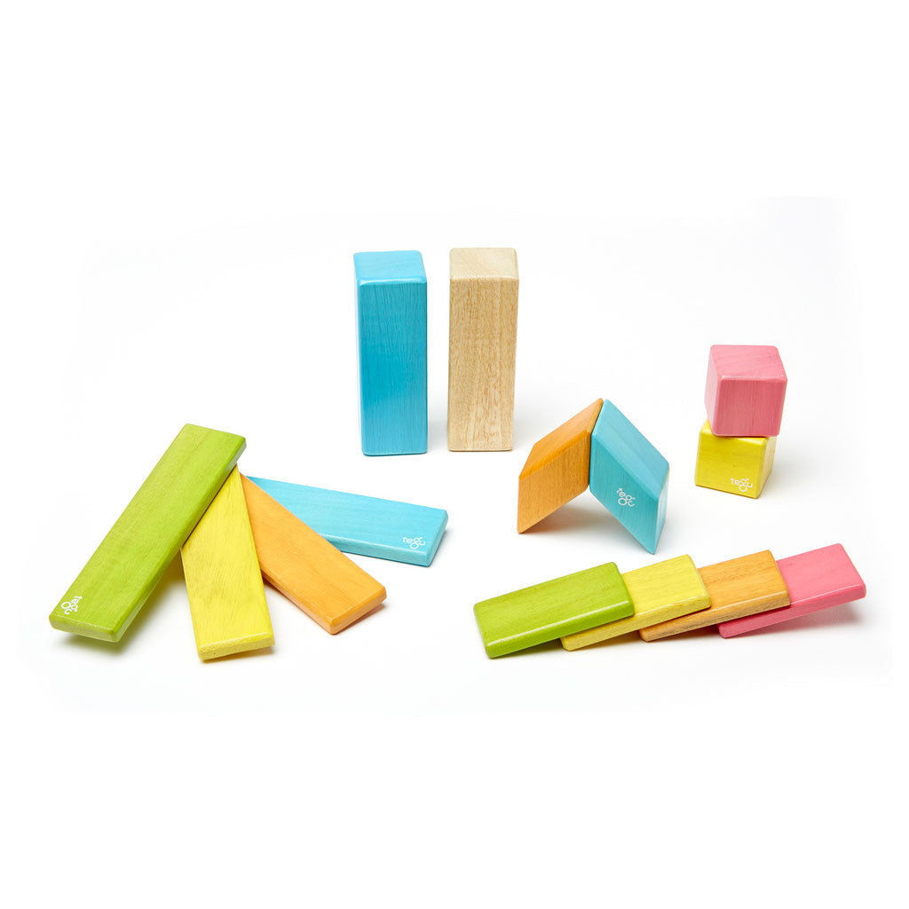 Tegu - Magnetic Wooden Blocks 14 Pc Set in Tints - Made in Honduras
