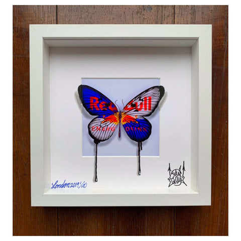 Urban Camouflage Butterfly / Red Bull