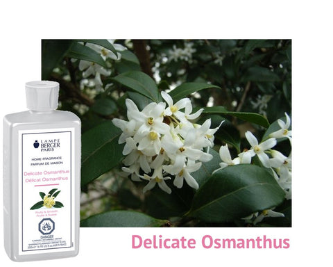 Lampe Berger Delicate Osmanthus
