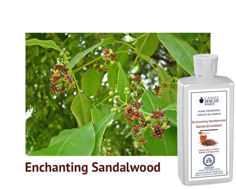Lampe Berger Enchanting Sandalwood
