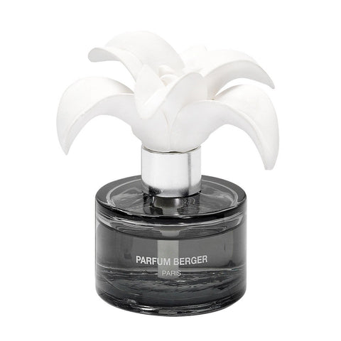 Parfum Berger Zest Of Verbena Fragrance Lily Mini Diffuser Set