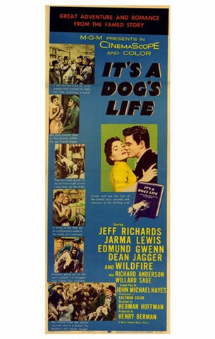 It's a Dog's Life Movie Poster Print
