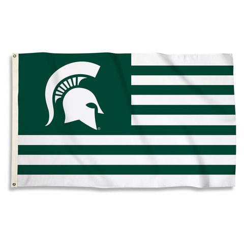 NCAA Michigan State Spartans 3'. x 5' Flag with Grommets, Green & Team Color,