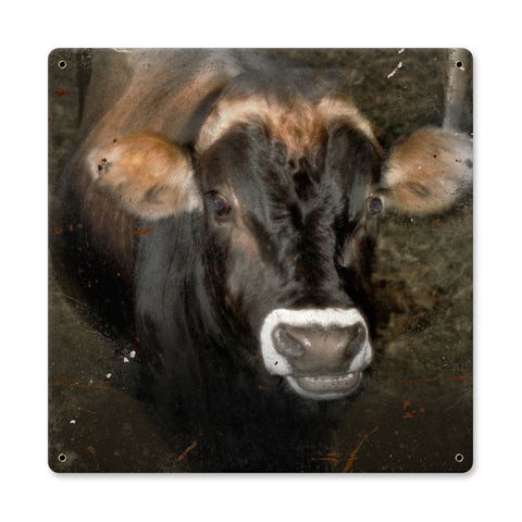Cow Face Metal Sign Wall Decor 12 x 12